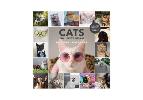Muurkalender 2020 Cats on Instagram