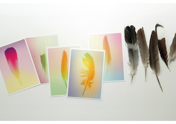 Kaartenset 'Gradient feathers'